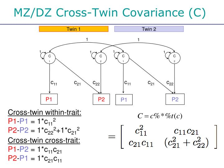 MZ/DZ Cross-Twin Covariance (C)