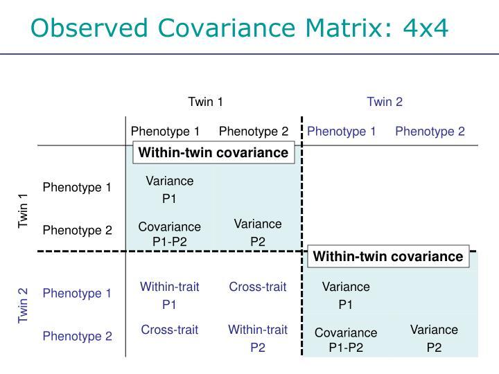Observed Covariance Matrix: 4x4