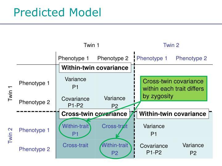 Predicted Model