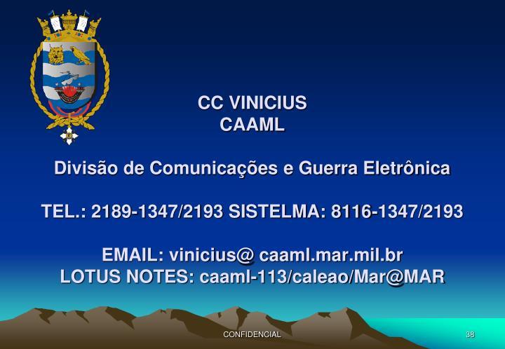 CC VINICIUS