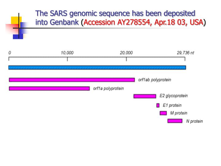 The SARS genomic sequence has been deposited into Genbank
