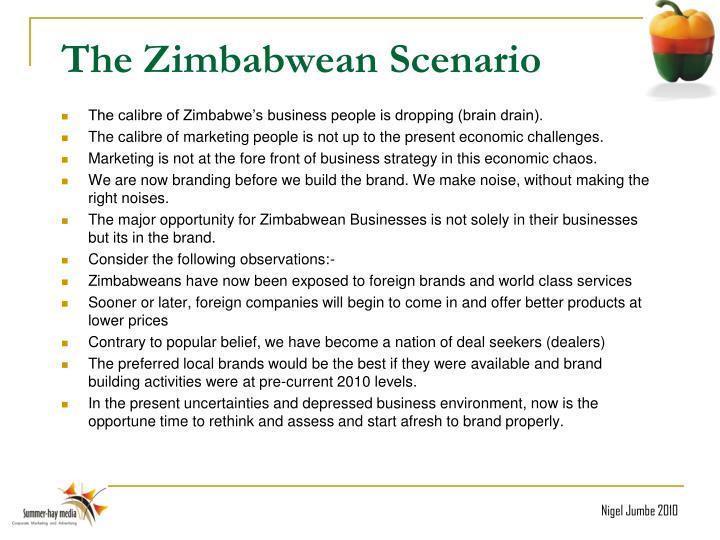 The Zimbabwean Scenario