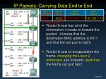 ip packets carrying data end to end4