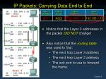 ip packets carrying data end to end5