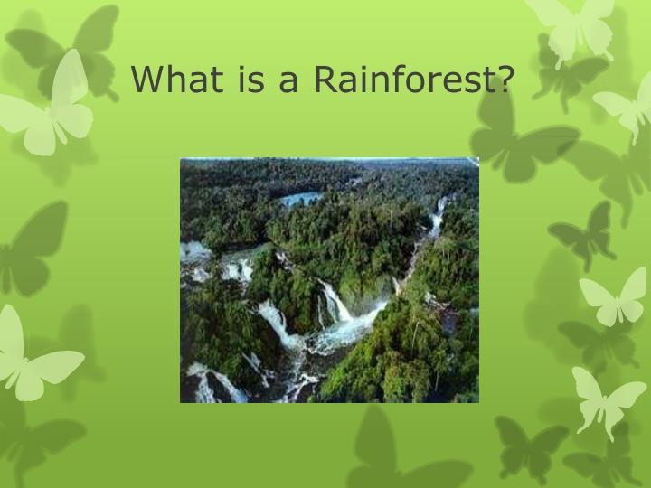 ppt what is a rainforest powerpoint presentation id 3735765