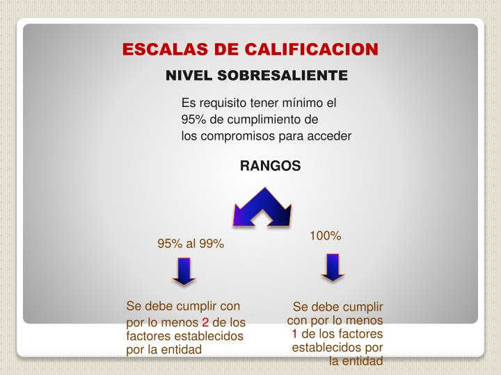 ESCALAS DE CALIFICACION