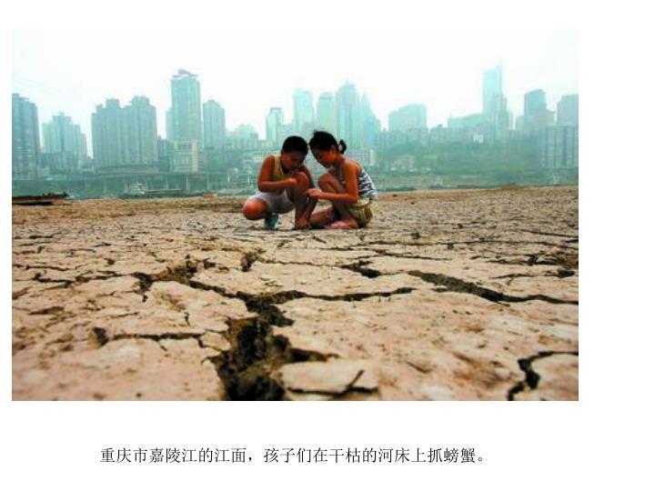 重庆市嘉陵江的江面,孩子们在干枯的河床上抓螃蟹。