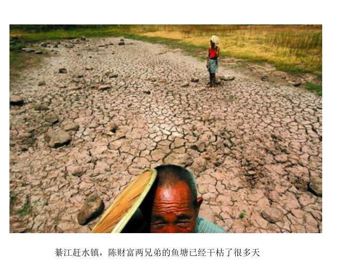 綦江赶水镇,陈财富两兄弟的鱼塘已经干枯了很多天