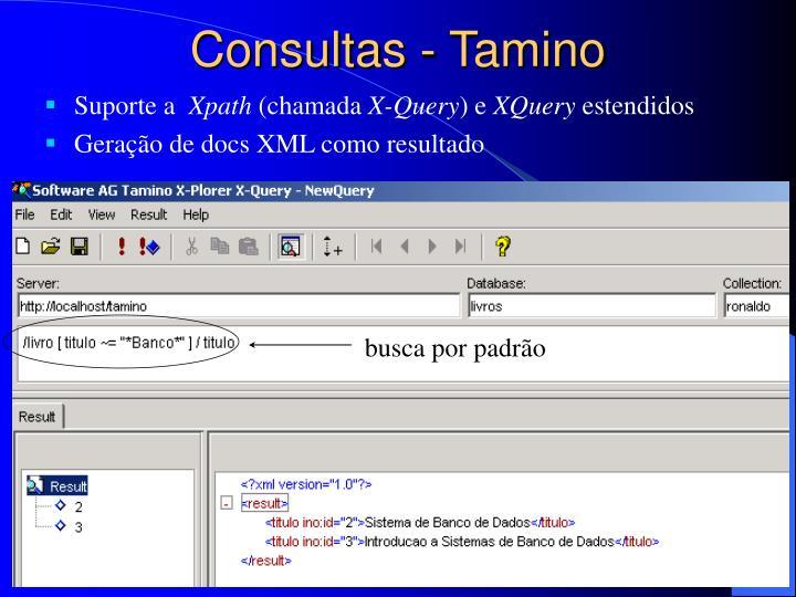 Consultas - Tamino