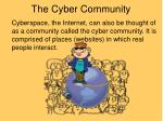 the cyber community