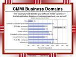 cmmi business domains1
