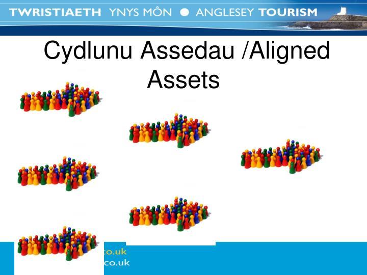 Cydlunu Assedau /Aligned Assets