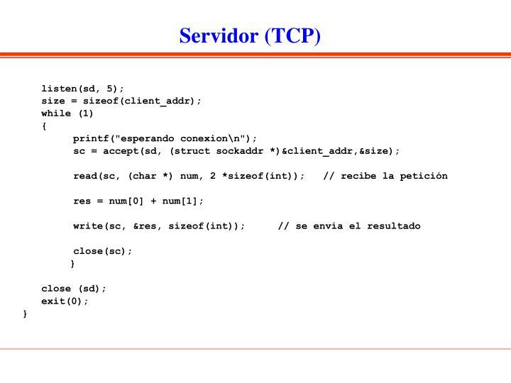 Servidor (TCP)