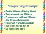 nitrogen budget example