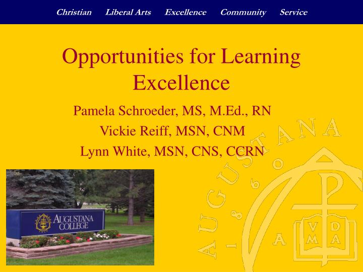 opportunities for learning excellence n.