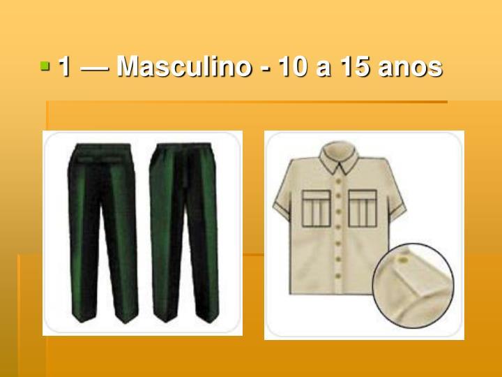 1 — Masculino - 10 a 15 anos