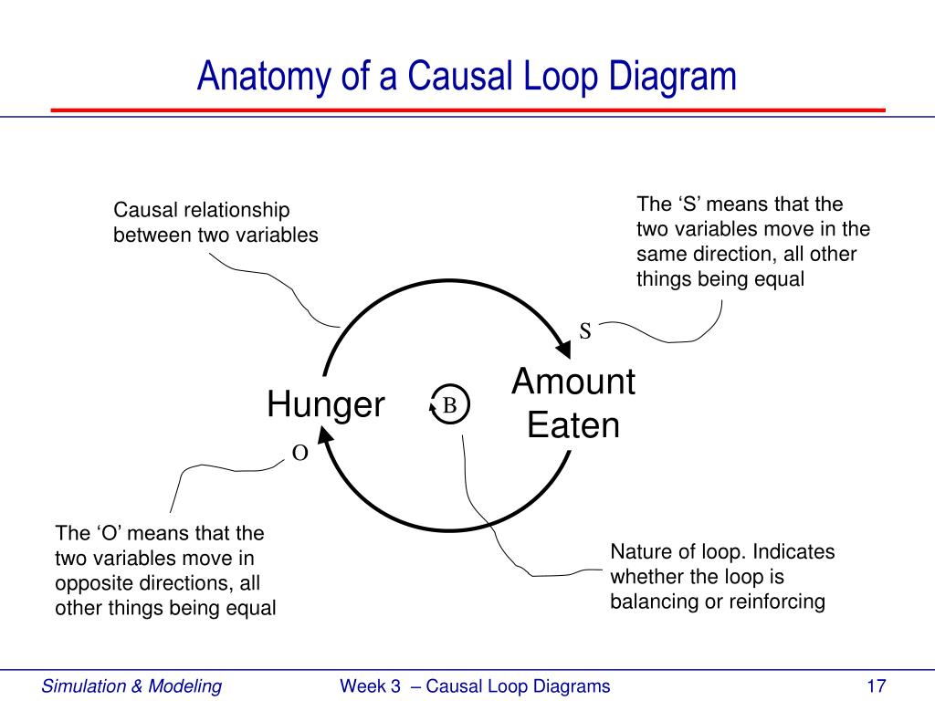 PPT   Systems Thinking & Causal Loop Diagramming PowerPoint ...