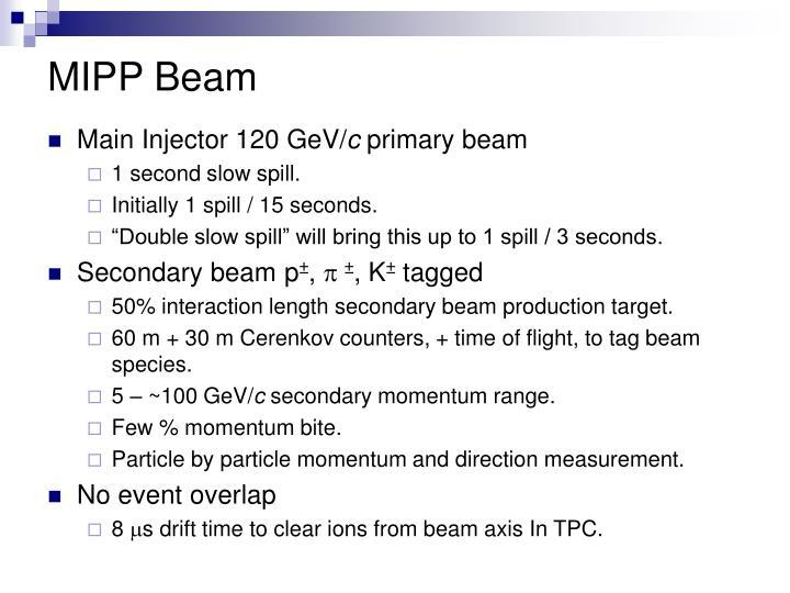 MIPP Beam