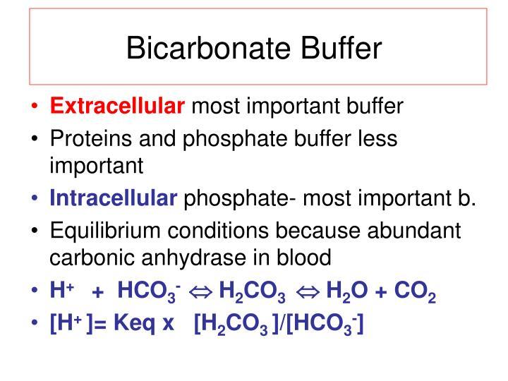 Bicarbonate Buffer