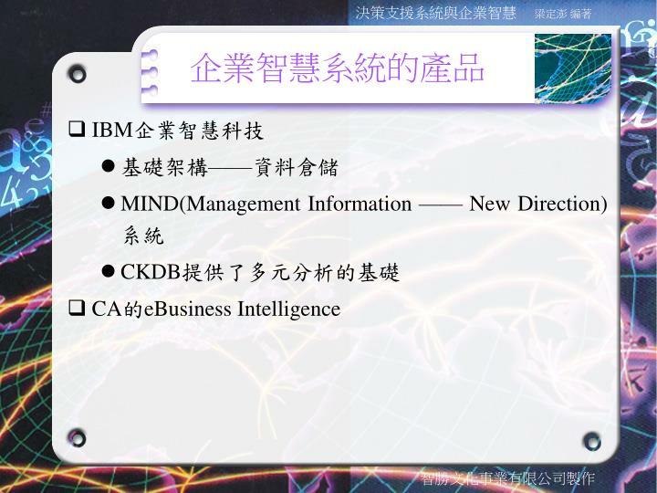企業智慧系統的產品