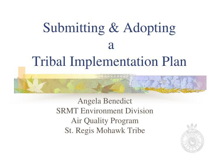 submitting adopting a tribal implementation plan n.
