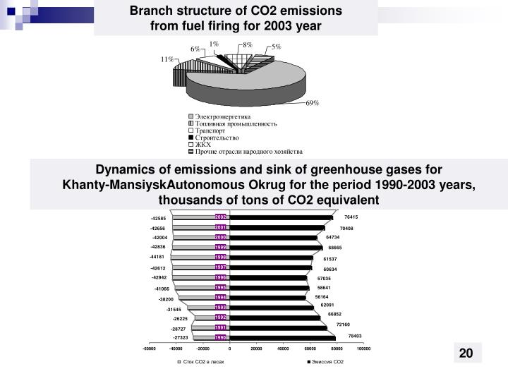 Branch structure of CO2 emissions
