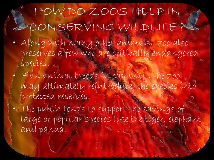 HOW DO ZOOS HELP IN CONSERVING WILDLIFE ?