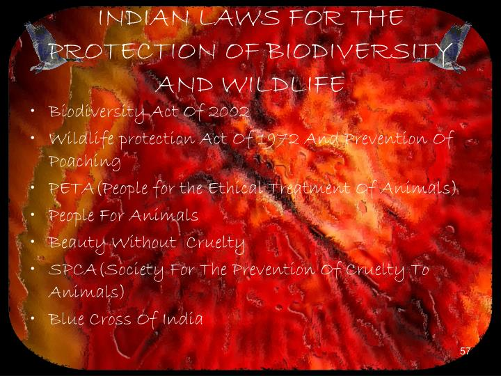 INDIAN LAWS FOR THE PROTECTION OF BIODIVERSITY