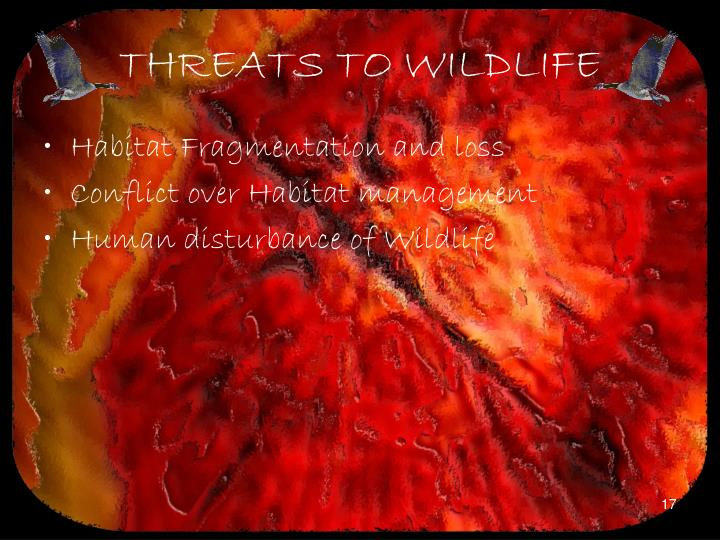 THREATS TO WILDLIFE