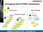 conceptual view of pesc transactions