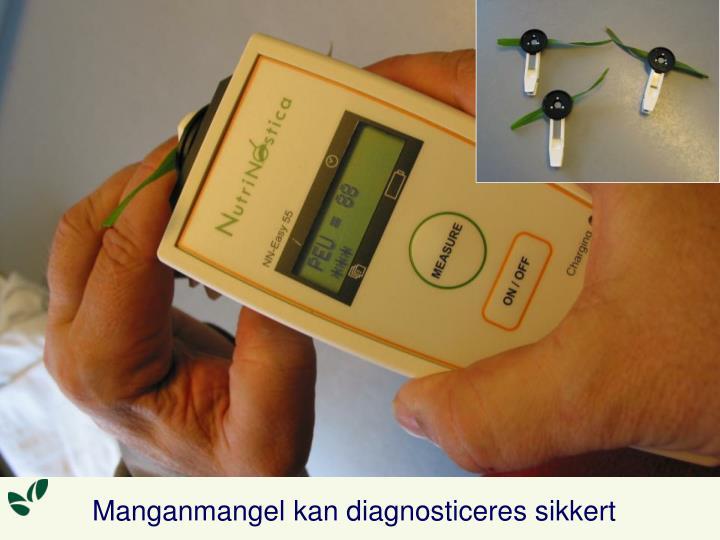 Manganmangel kan diagnosticeres sikkert
