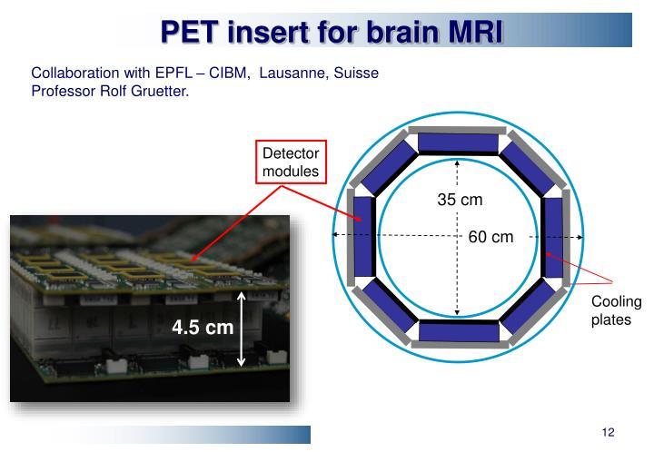 PET insert for brain MRI