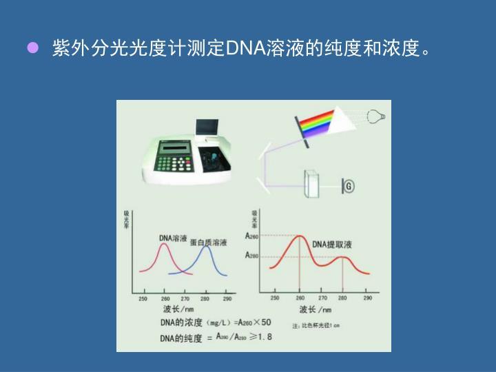 紫外分光光度计测定
