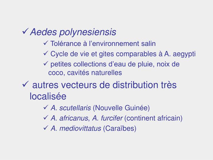 Aedes polynesiensis