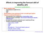 efforts in improving the forecast skill of grapes gfs toward operation