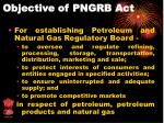 objective of pngrb act