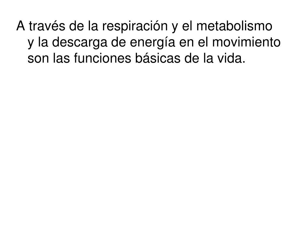 Cose los beneficios de Ibuprofeno metabolismo  Aprenda estas 10 ideas