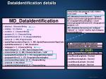 dataidentification details
