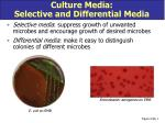 culture media selective and differential media