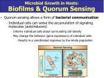 microbial growth in hosts biofilms quorum sensing