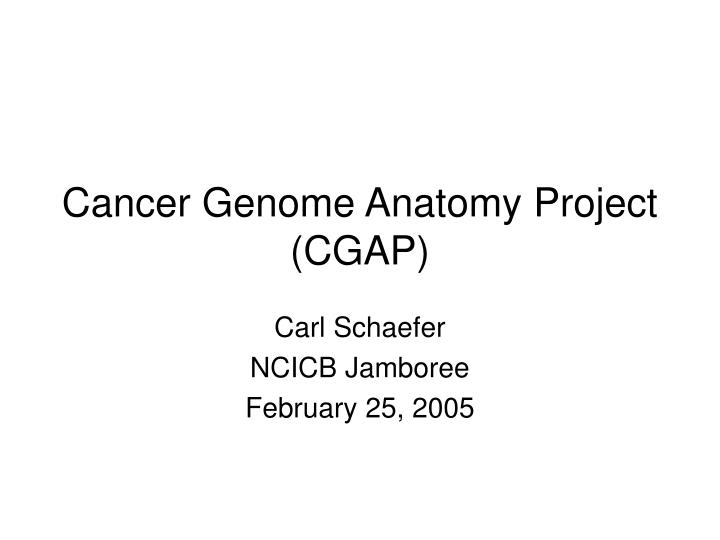 PPT - Cancer Genome Anatomy Project (CGAP) PowerPoint Presentation ...