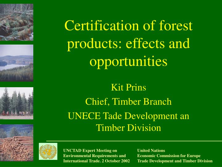 forests products and opportunities essay Restoration brings tremendous economic benefits resulting from increased productivity on formely degraded lands reforested lands can produce more timber and non-timber forest products (such as fruits and nuts, fish and game, medicinal plants, barks and fibres) and offer new livelihood opportunities for forest-dependent communities.