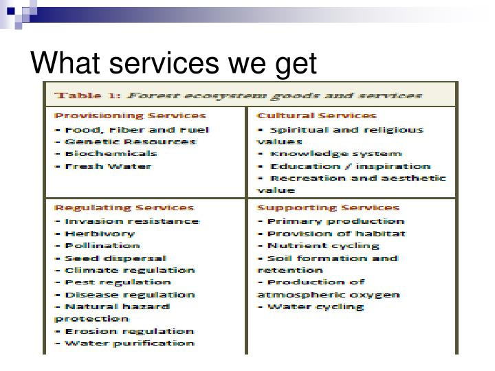 What services we get