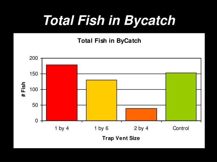 Total Fish in Bycatch