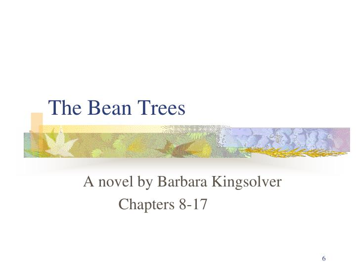 the bean trees n.