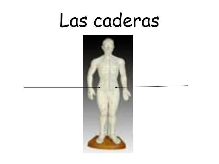 Las caderas