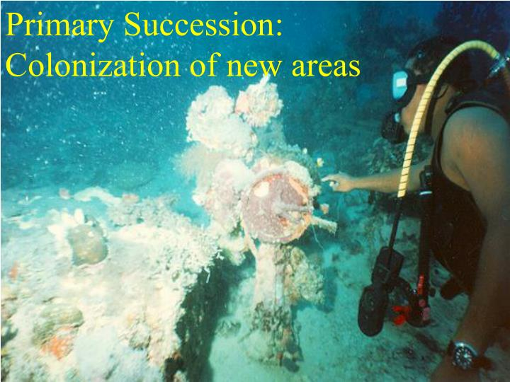 Primary Succession: Colonization of new areas