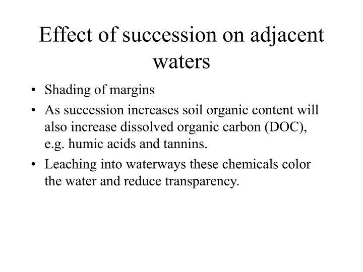 Effect of succession on adjacent waters