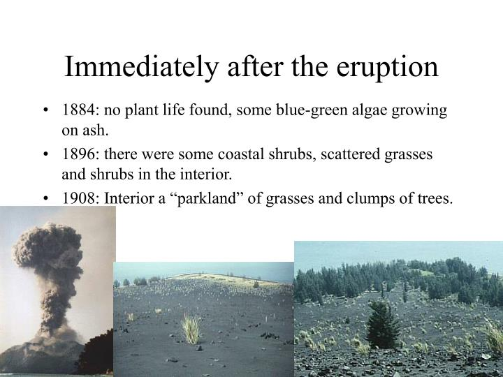 Immediately after the eruption