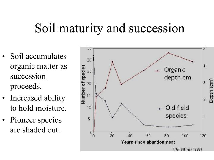 Soil maturity and succession